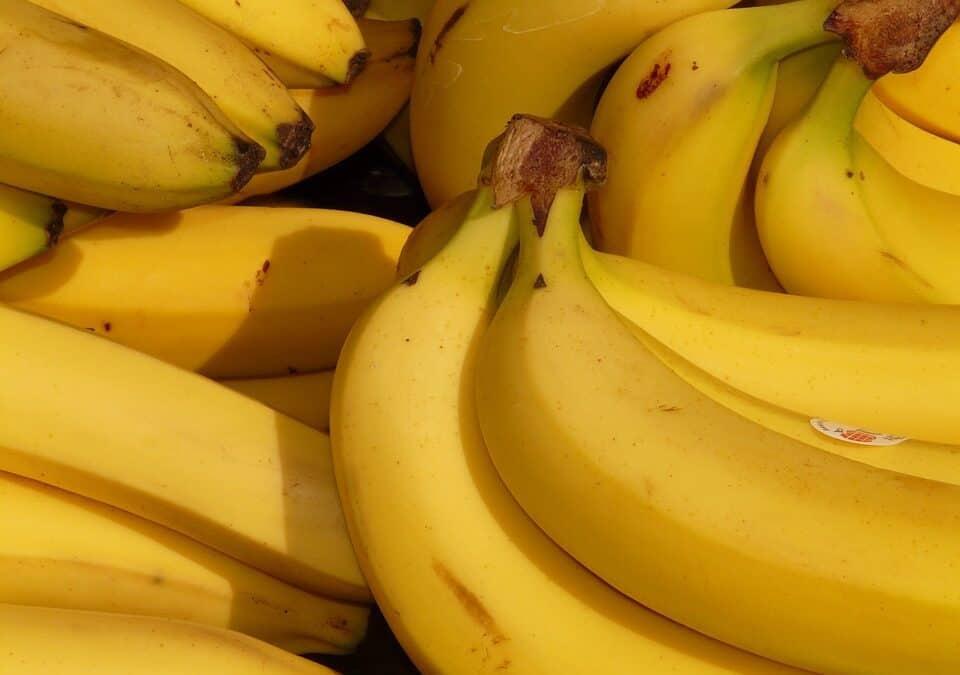 الموز..5تغييرات مدهشة تحدث لجسمك عند تناوله يوميا