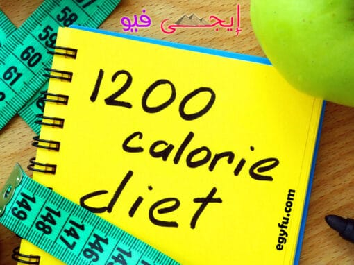 رجيم 1200 سعرة حرارية : هل يعمل على إنقاص الوزن ؟